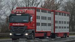 D - Schluter MB Actros 1846 LH08 (BonsaiTruck) Tags: truck lorry camion trucks livestock mb lastwagen lkw actros lastzug schlter lortries