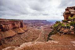 ROSH3803-Edit.jpg (Roshine Photography) Tags: utah us unitedstates canyonlandsnationalpark moab pentaxk3ii 2016utahtrip