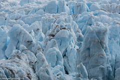 Nordenskild glacier, Svalbard (mjevons1) Tags: norway nikon glacier svalbard nxd nordenskild d7200