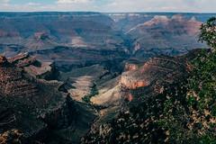 Canyon Trail (greghanover) Tags: summer arizona sky cloud southwest green nature america landscape outdoor grandcanyon canyon trail northamerica southrim grandcanyonnationalpark