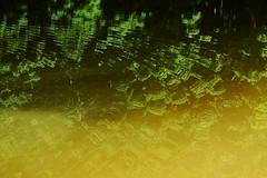 water abstract (heyjudephoto) Tags: abstract green water yellow modern waves minimal ripples
