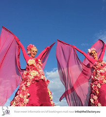 flower bombs bloem steltenlopers the S factory 2016 2 (thesensefactory) Tags: pink flower stilts bloemen roze bloem stiltwalkers stelzentheater steltloper steltlopers steltenlopers steltenloper thesfactory