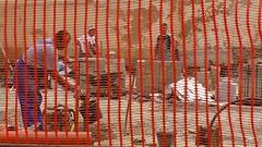 workers (Miroslav Vajdi) Tags: city trip travel wallpaper vacation europe cityscape croatia tourist adventure zagreb  travelphotography greatnature i beautifullnature  instatravel m1r0slavv cleannature   vip
