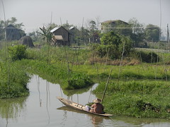 Inle Lake (simo2582) Tags: travel people panorama woman lake reflection nature water landscape lago see daylight boat asia day village view burma traditional floating lac human rowing environment myanmar inle agriculture birma shanstate floatinggarden birmania