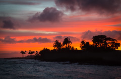 Sunset on Koloa (odonata98 (Kimberly Reinhart)) Tags: sunset hawaii beachhouserestaurant koloa lawaibeach kuaui silhouette palmtrees ocean outdoor outdoors beautiful beach water nature sky sun summer summertime love skylovers cloudporn dusk weather day sunrise amazing beauty shore pink orange yellow black view night