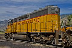 DSC03426--Brigham, Utah (Lance & Cromwell back from a Road Trip) Tags: railroad utah sony unionpacific brighamcity boxeldercounty a55 sonyalpha sal16105
