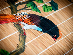 Day 140 - Oriental Bird (Kelmon) Tags: wood color colour bird nature oneaday artwork photoaday oriental pictureaday project365 project365140 project365052013 project36520may13