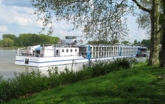 201305_rhine_and_moselle-2-18.jpg (Johnchess) Tags: cruise germany rhine bellevue speyer may2013