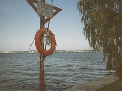 August 7th  / 2013 (Gogakki) Tags: toronto downtown olympus lakeshore f18 omd 17mm em5 mzuiko