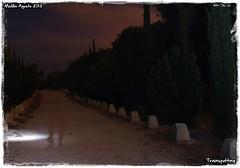 Paseando a media noche (Trainspotting ML) Tags: light lightpainting painting star paint trails playa taller photowalk nocturna kedada melilla pinares barranco quedada startrails fotografas pintandoconluz iluminacin fotogrfica lightpaint lighpainting coloradas horcas pintarconluz pintarluz quemadero rostrogordo pwmelilla