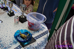 """Family Crabbing Competition • <a style=""""font-size:0.8em;"""" href=""""http://www.flickr.com/photos/89121581@N05/9599435732/"""" target=""""_blank"""">View on Flickr</a>"""