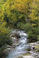 E' gi autunno (d.carradori) Tags: italy beautiful landscape fiume tuscany firenze toscana acqua paesaggi atmosfera paesaggio fotografo danilo bosco fotografare fotoclub passionphotography fotoclubilbacchino carradori