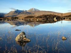 Lochan na h - Achlaise (reeds) (kenny barker) Tags: scotland explore rannochmoor scottishlandscape olympusep1 panasonic20mmf17asphlens