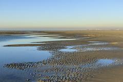 Immensit (Mariette80) Tags: nature automne paysage campagne plage manche picardie dcembre somme littoral fortmahon borddemer canon60d ctepicarde canonefs1755 18mp