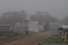 Foggy St John 047