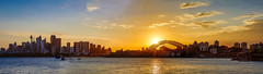 Panorama - Sydney Sunset from Cremorne Point (Gil Feb 11) Tags: panorama sydney australia newsouthwales mcmahonspoint canon5dmkiii sunsetcremornepoint