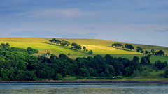 Green, green . . . (PeterCH51) Tags: uk blue sky green water grass landscape scotland scenery fields cromarty inverness blackisle nigg 5photosaday mywinners flickraward peterch51 flickrtravelaward