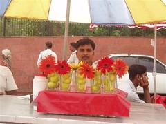 Kurmi_Paniwalla