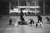 _peguem a bolinha (.merchan) Tags: pictures city brazil urban blackandwhite bw dog pet pets cão brasil canon photo reflex foto photographer sãopaulo pb perro sp cachorro urbano reflexo pretoebranco paulista t3i avpaulista metrópole cenaurbana blackwhitephotos jornadafotográfica saídasfotográficas saídafotográfica cidadesbrasileiras cityofsaopaulo yourcountry fotocultura yuribittar abnermerchan canoneosrebelt3i 35fotocultura 35ªsaídafotocultura