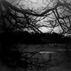 Inlet (eevarita) Tags: blackandwhite 120 film square lomo lomography helsinki diana dianaf earlgrey 120mmfilm