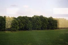 (Osyam-osyam) Tags: wood trip trees light sky sun blur color reflection green film nature field grass leaves clouds landscape view grain ukraine lane