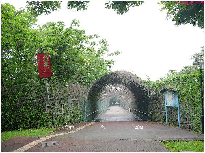 大溪埔頂公園 (11).JPG