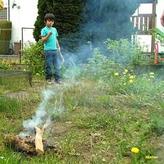 making a fire in the kitchen garden (mknt367 (Panda)) Tags: boy man kids garden fire weeds brother nephew l kitchengarden makingfire