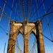 Spider's Bridge