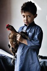Shanullah, 7 anni