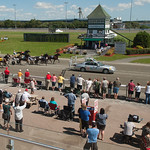 Red Shores Harness Racing action and wagering thumbnail