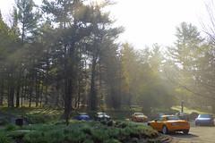 Early Morning Miatas (Jim See) Tags: mist stowe miata sunbeam stowehof miatas undergroundmiatanetwork