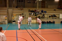 "Stockholm Kihon No.10a - 28 • <a style=""font-size:0.8em;"" href=""http://www.flickr.com/photos/143593165@N07/26699378504/"" target=""_blank"">View on Flickr</a>"