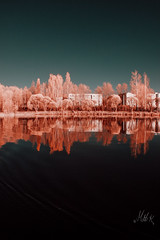 First trip to the lake (Matti Kurkela) Tags: canon infrared 550d canon550d