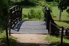 Wood bridge (bozhin.karaivanov) Tags: camera wood bridge pond sofia location bulgaria nikond3200    parkvrana