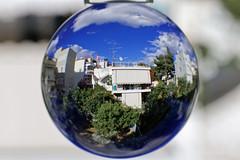 Microworld: our backyard (bbarekas) Tags: home backyard afternoon greece crystalball attiki microworld agiaparaskevi