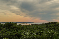 Evening view at the Hittarp reef (frankmh) Tags: sea sky beach landscape evening skne sweden outdoor reef helsingborg resund hittarp
