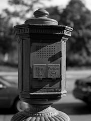 Brooklyn (Carl Hall Photography) Tags: nyc newyorkcity newyork brooklyn mediumformat bronica ilford fp4 ilfordfp4 bronicaetrs catfilm broncia75mmeii