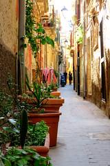 2016.04.30 - Syracuse - Ile d'Orthygie (32) (Esteban 86360) Tags: travel italy syracuse ruelle rue italie sicilia landsape sicile