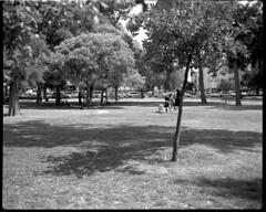 Park Hayarkon,Tel Aviv (Dan.Arad) Tags: ilford fp4 1100 125 670 plaubel makina adox adonal