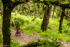 the resilient women of the hills (islahuddin ashraf) Tags: monumnets nikond40xpics olddelhi strret tifffiles