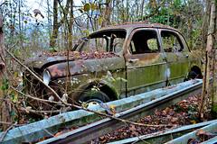 fiat 1100/103 (riccardo nassisi) Tags: auto abandoned car pc rust ruins fiat rusty scrapyard wreck scrap piacenza wrecked ruggine relitto rottame travo epave abbandonata
