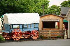 IMG_3754 (joyannmadd) Tags: amish horses intercourse pennsylvania kitchenkettlevillage farm animals lancaster coumty pa farms nature outdoors