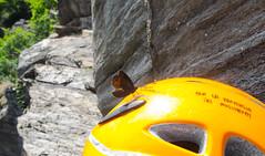 P7031944 (diegobracco) Tags: gianluca arrampicata bourcet multipitch urlodimunch