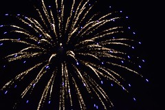 FIRWORKS ROTARY FEST (abbigail may) Tags: blue night gold fireworks celebration