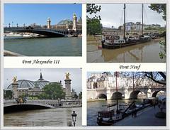 2016.06.02.073 PARIS - La Seine en crue (alainmichot93 (Bonjour  tous)) Tags: 2016 france ledefrance seine paris laseine fleuve crue eau toureiffel arbre
