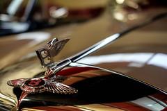Bentley (Silver Machine) Tags: haynesinternationalmotormuseum sparkford yeovil somerset bentley car luxurycar carmuseum bokeh shallowdepthoffield fujifilm fujifilmxt10 fujinonxf35mmf2rwr brilliant