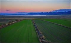 Gallocanta (antoniocamero21) Tags: color verde rural foto sony zaragoza amanecer cielo cultivos perspectiva laguna montaas gallocanta aragn tornos planicie
