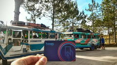 (178) Beep - card jeep jeepney vacation travel baguio benguet philippines kevin chavez (Kev Chavez) Tags: enjoyinglife travel random kevinchavez explore hobby hobbyist takingphotos adventure lifestyle leisure scenic goodlife explorer magicmoments
