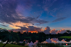Florida Life: Morning Has Broken (Thncher Photography) Tags: sky nature clouds sunrise reflections landscape outdoors florida sony scenic silhouettes stuart palmtrees tropical fullframe fx waterscape martincounty palmcity hammockcreek southeastflorida zeissfe1635mmf4zaoss a7r2 ilce7rm2 sonya7r2