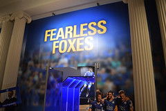 Fearless Foxes (lcfcian1) Tags: new june museum nikon display leicestershire walk leicester foxes fearless nikond3200 leicestercity lcfc newwalkmuseum leicestercityfc fearlessfoxes newwalkmuseumfearlessfoxes